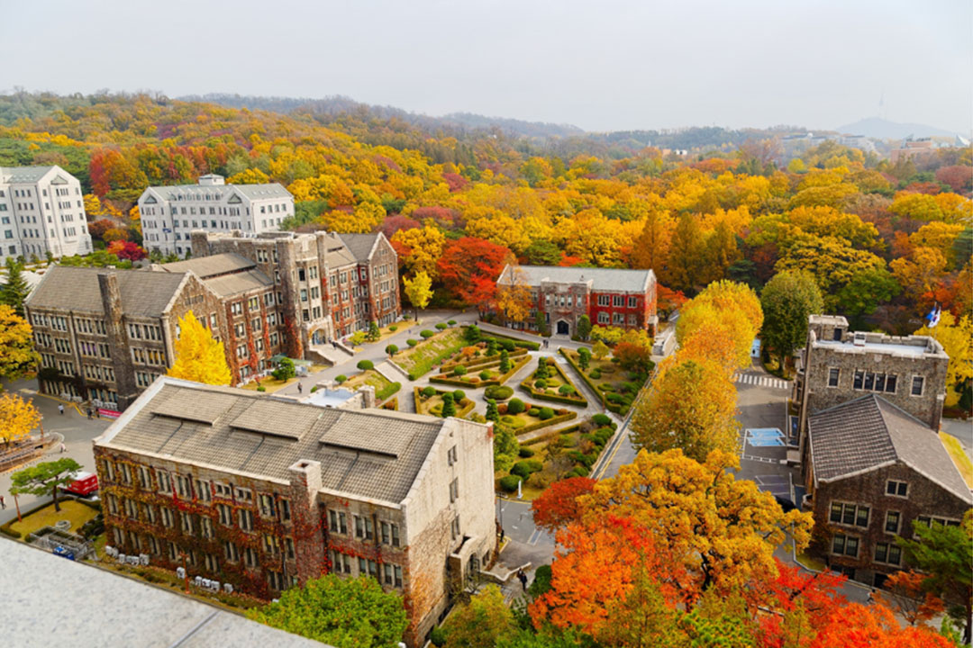 Birds-eye view of Yonsei university buildings surrounded by fall foliage